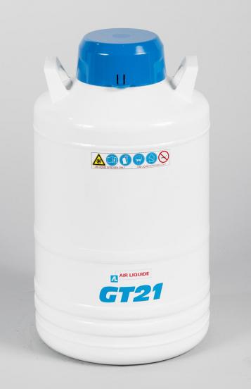 GT9 Dermato - GT21 Dermato