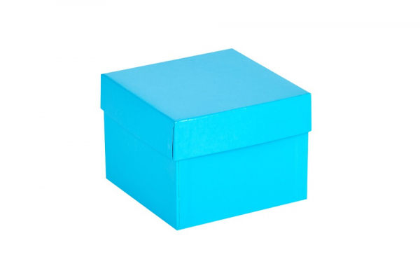 Cryo-Box 133 x 133mm, Höhe 100 mm (wasserfest)