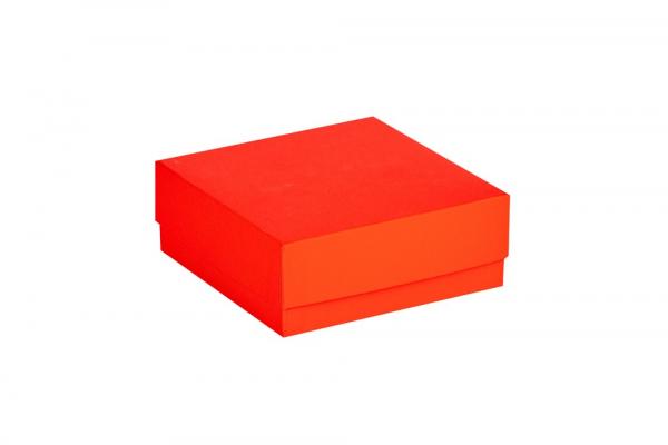 Cryo-Box 133 x 133mm, Höhe 50 mm (wasserfest)