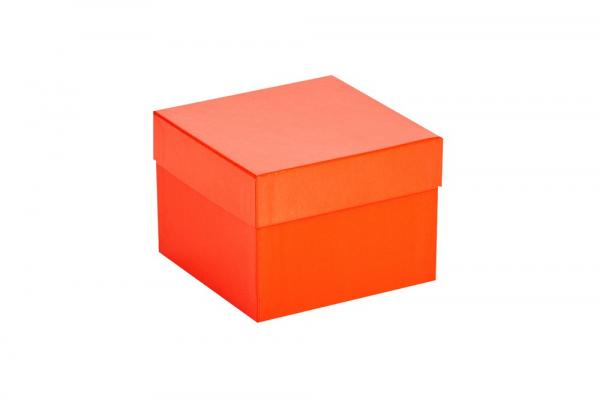 Cryo-Box 136 x 136mm, Höhe 100 mm (wasserfest)