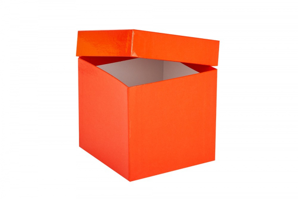 Cryo-Box 136 x 136mm, Höhe 130 mm (wasserfest)
