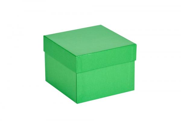 Cryo-Box 133 x 133mm, Höhe 75 mm (wasserabweisend)